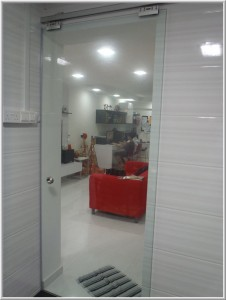 Frameless Tempered Glass Door
