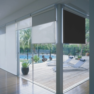 Glazing with roller blinds